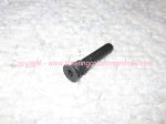 Lock Cylinder Retaining Screw